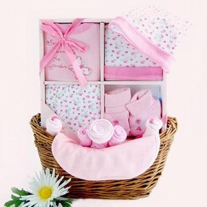 11 best gift baskets images on pinterest baby gifts baby girl your wholesale dropship source sweet baby girl gift basket negle Images