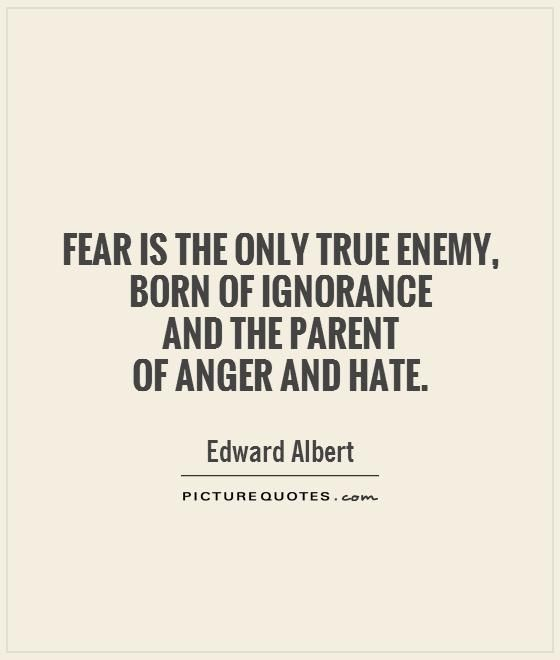 Quotes About Anger And Rage: Best 25+ Ignorance Quotes Ideas On Pinterest