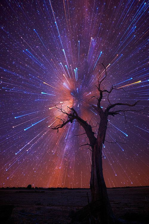 the Australia-based photographer creates magical worlds that blend real with surreal. with painterly characteristics,strong, silhouetted landscapes sit in the foreground surrounded by energetic star trails forming unusually powerful bursts across the back-ground. A normally peaceful starry night is quickly transformed into a sprinkling of fire-works in the Australian outback. Harrison says,With no buildings for miles the sky is so clear...