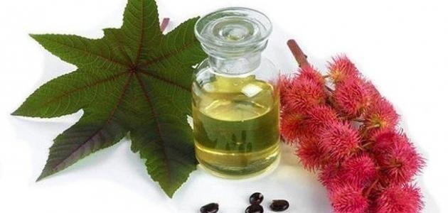فوائد زيت الخروع للبطن وللبشرة وأضراره Perfume Perfume Bottles Glass Vase
