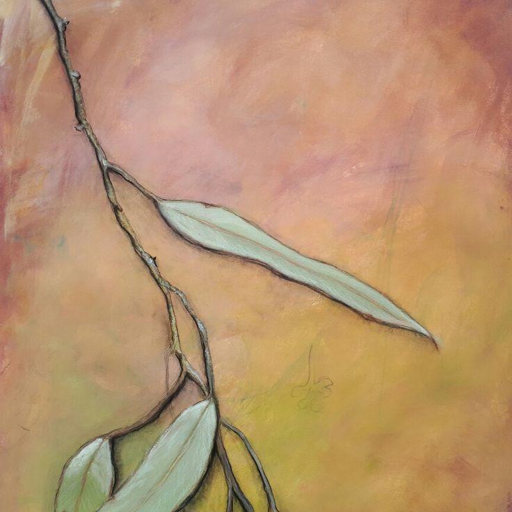Eucalyptus leaf Detail.  Nidia Hansen