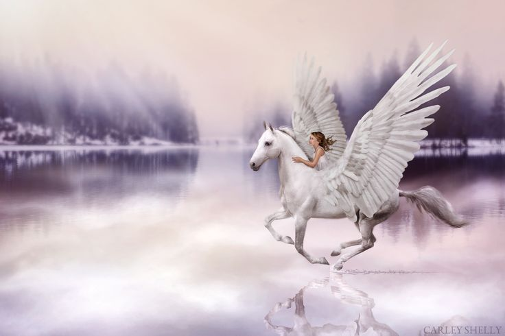 'A Dance at Sunrise' by Carley Shelly Photography           Girl riding horse with wings. Pegasus. Water Reflection. Digital Art