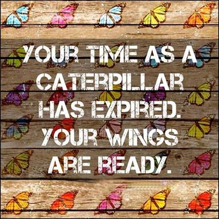 Your time as a caterpillar has expired. Your wings are ready <3