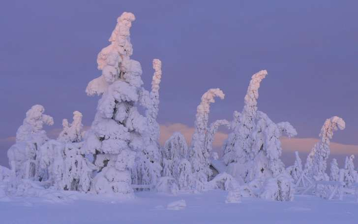 Sentinels of the Arctic, Finland