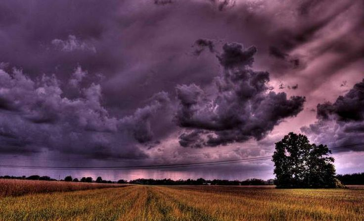 Zack Storm Coloring Pages: 17 Best Images About Purple Skies On Pinterest