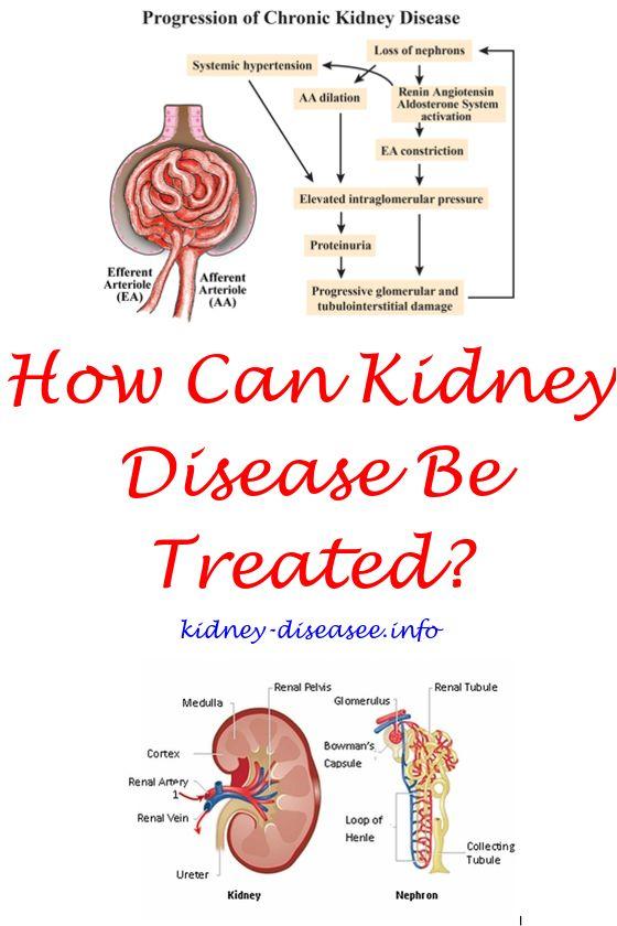 Renal Diet Families | Diabetes | Kidney disease symptoms