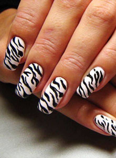 27 best zebra print nails images on pinterest zebra print nails zebra print nails designwhite and black zebra stripe nails for girlszebra print nails art for 2013 fallwinter prinsesfo Images