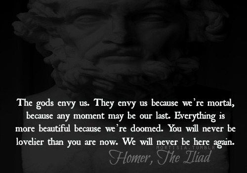 If I recall correctly, this quote actually isn't in the original Iliad, but is a fantastic line from Troy nonetheless.