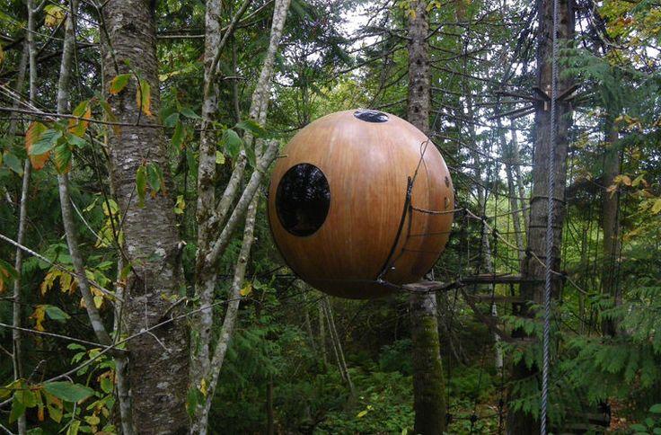 В Канаде построили круглые гостиничные номера на деревьях / Моя Планета