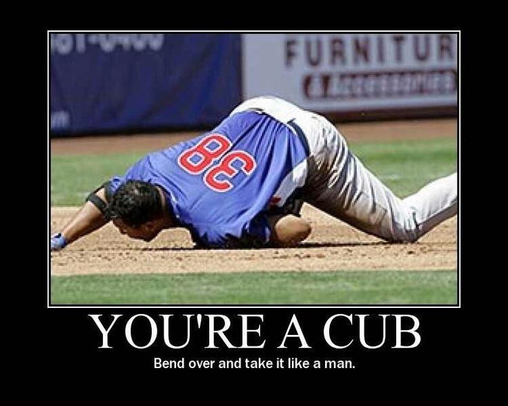 Cubs photos suck pics
