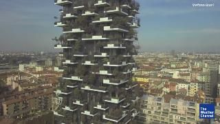 Trees Take Over Massive Skyscraper.. National and Local Weather Forecast, Hurricane, Radar and Report