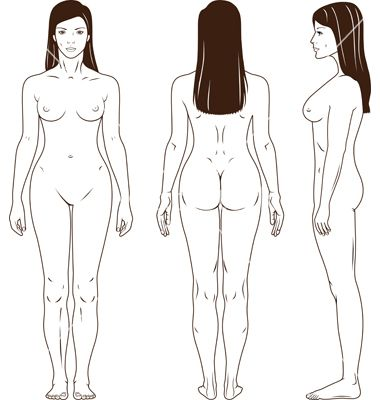 Naked standing woman vector 665184 - by arlatis on VectorStock®