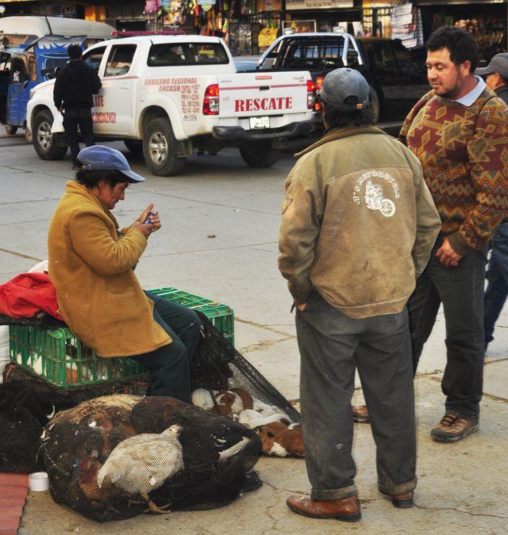 Vaste Food Au Pérou, on mange des Cuys ! - Vaste Food