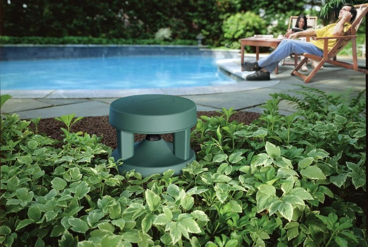 Bose Outdoor Bluetooth Speakers