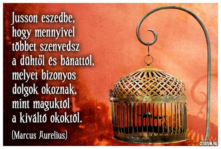 Marcus Aurelius idézete a dühről és a bánatról.