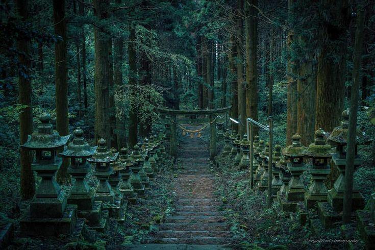 「deep forest shrine」 ・ Location:熊本(Kumamoto JAPAN🇯🇵) ・ This place is Kamishikimi Kumanoimasu Shrine in Kumamoto Prefecture. It is in a deep forest. ・ 昨日は親戚が集まりトランプしたりのんびり。そうだ写真撮らなきゃ!と思い立ち夕景行ってきます🏃♂️ ・ 写真は昨年熊本で撮影した上色見熊野座神社。漢字の読み方わからなかった笑。季節が変わった時に再び行きたい場所です。正月だから神社⛩をpost。 ・ ・ #igersjp #japanawaits #instagramjapan #dairy_photo_jpn #ig_japan #Lovers_Nippon #icu_japan #japan_of_insta #team_jp_ #bestjapanpics #東京カメラ部 #tokyocameraclub #wu_japan #photo_shorttrip #ptk_japan #art_of_japan…