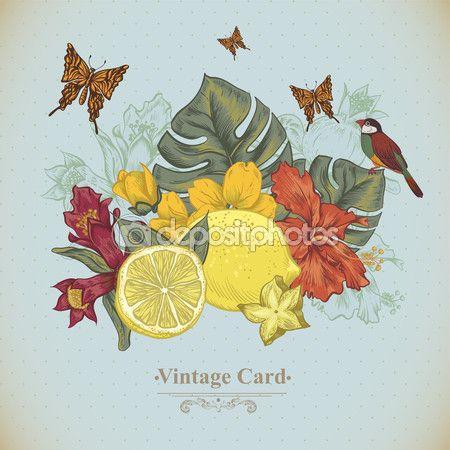 Старинные открытки тропические фрукты, цветы, бабочки и птицы — стоковая иллюстрация #73057721
