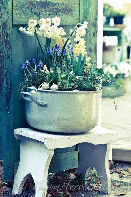 I just can't get enough of the old pots as planters. I just love the country look! Can't wait to do this with an antique washing machine though.