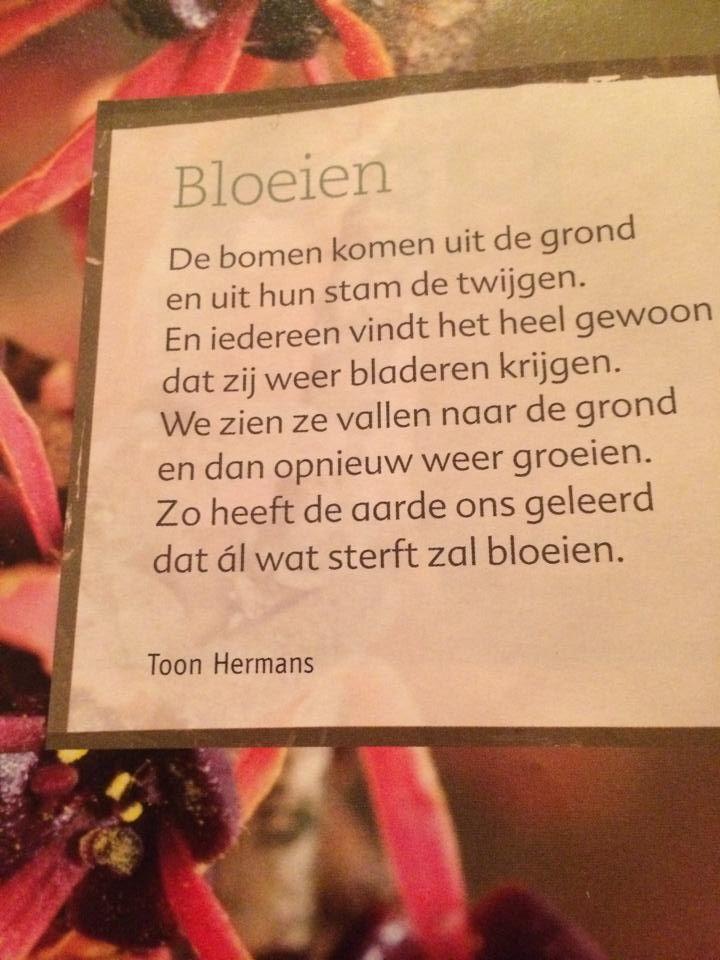 17 beste ideeën over Toon Hermans op Pinterest - Blije ...