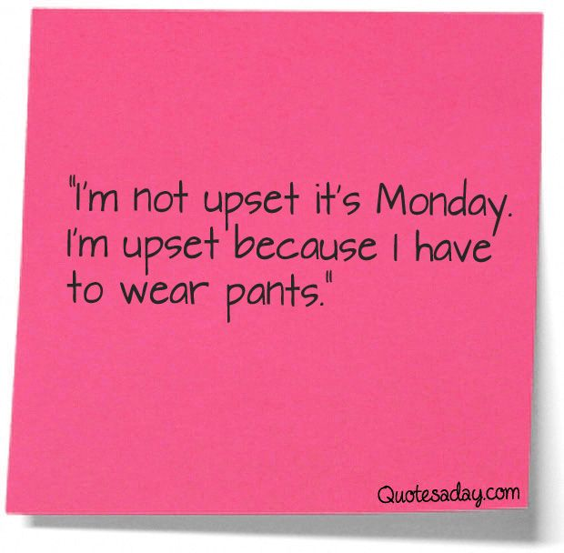 not upset that it's monday upset that i have to wear real pants - Google Search
