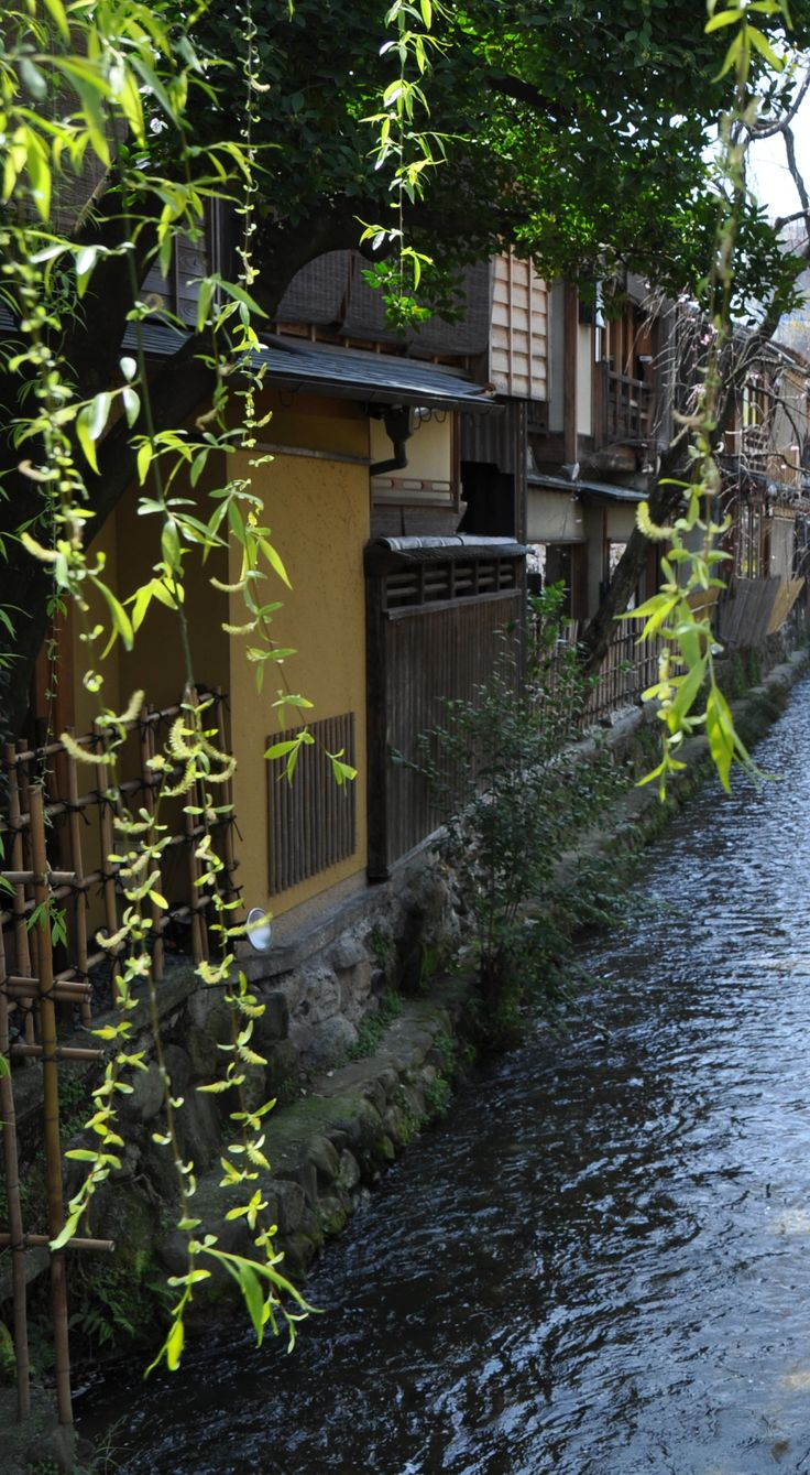 Gion Shirakawa, Kyoto, Japan