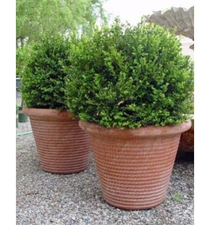 Traditional Outdoor #planters By Detroit Garden Works