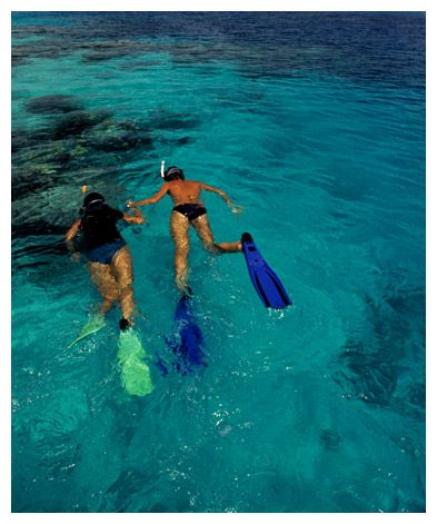 Bahia Honda State Park - Looe Key Snorkeling Tours - $30
