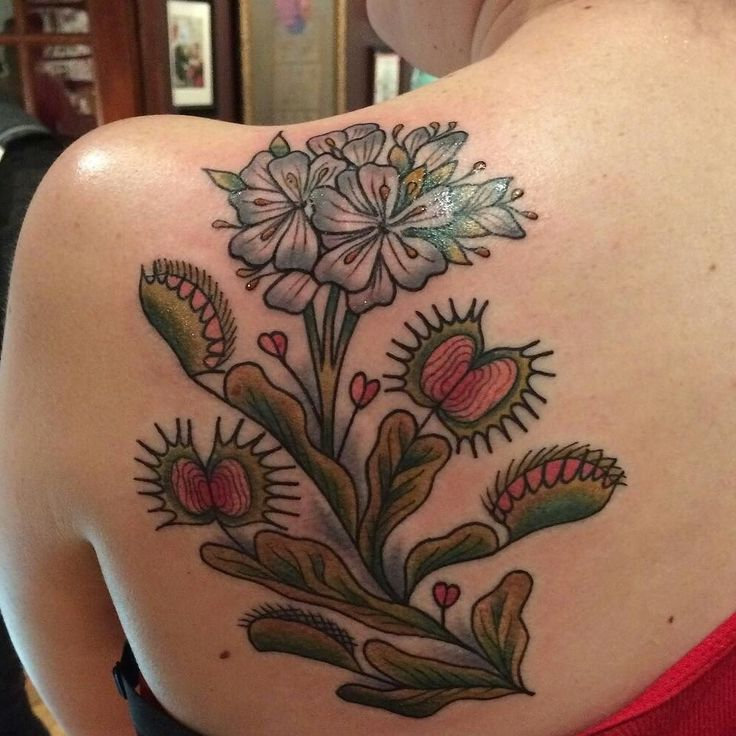 I absolutely adore my venus flytrap tattoo! Thanks again