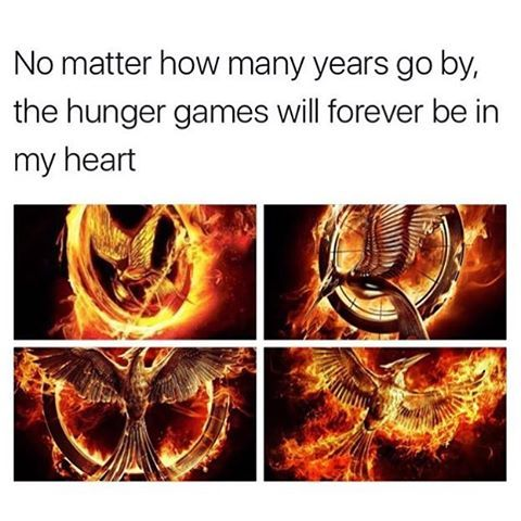 + I will always love The Hunger Games  —  First post of 2017!