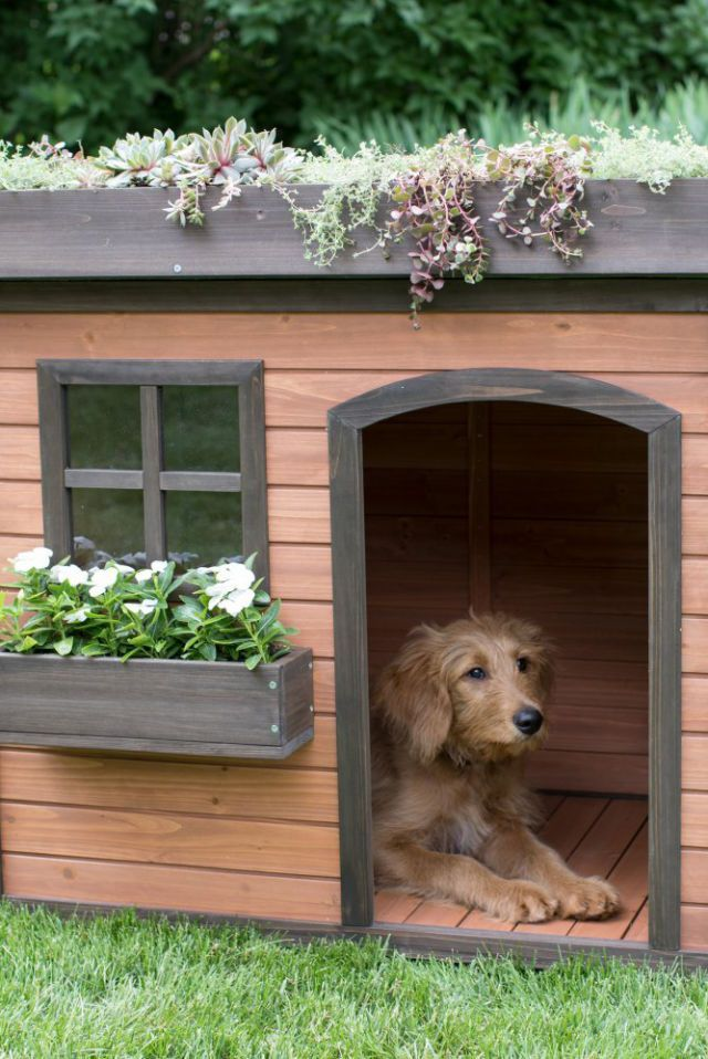 15 Of The Most Amazing Dog Houses You Can Buy Fancy Dog Houses