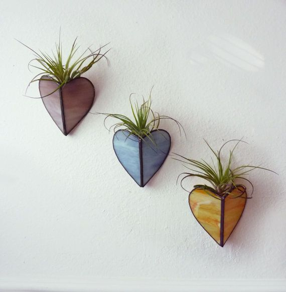 25 best ideas about wall vases on pinterest hanging for Air plant art