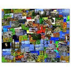 Mental landscape Puzzle