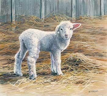 "Wildlife Experience "" New Beginnings "" Lamb - Original Painting by Susan Bourdet"