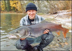 Fishing for Taimen Trout in Russia -   The Taimen, the true legend in the world of fresh water fishing, frequently called the river wolf by local inhabitants. Taimen is the largest trout and can frequently reach 20 to 30 kilograms (45 to 65 lbs.).