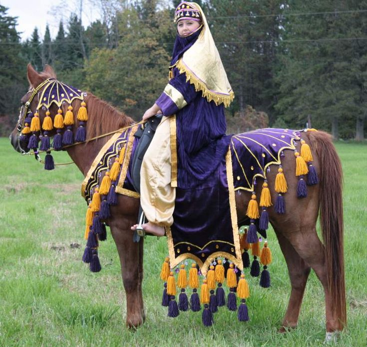 Costumes for Your Horse | Costumes For Sale - Chelsey's Custom Native Arabian Horse Costumes