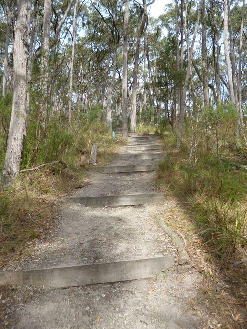 Mount Cannibal Flora and Fauna Reserve