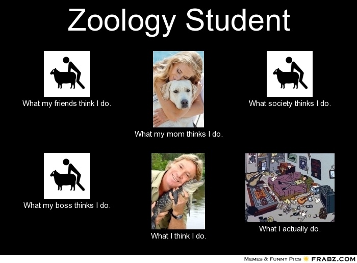 25 best images about Zoology :) on Pinterest | Picture ...