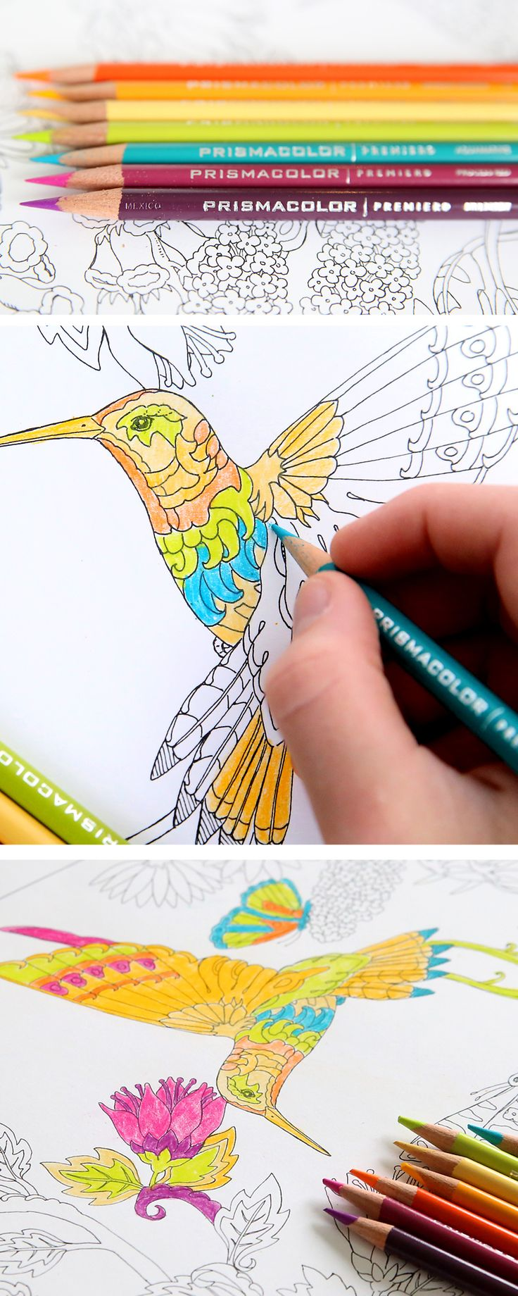 Coloring book michaels - For Kids And Adults That Love To Color Find Free Coloring Sheets And Pinprismacolor