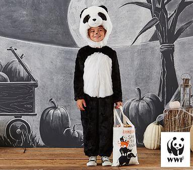 Endangered Panda Costume, 4-6