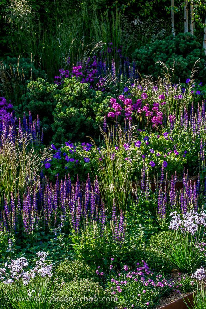 Violet and Lavender are such Beautiful and Stunning Flowers and Colours!!!