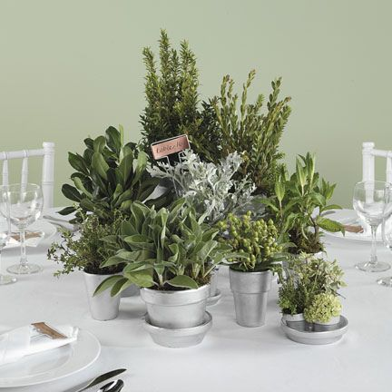 Try using potted herbs as centerpiece. This is perfect for any garden or rustic wedding. Not only does it add a nice scent to the table, it also serves as a take away gift for your guests!