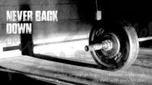 Never back down. Cartel