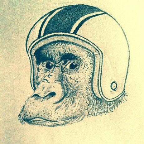 Ape apologize