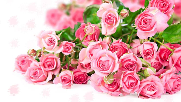 Pink Flower Bouquet | Pink rose flower bouquet, romantic color Wallpaper | 1920x1080 ...