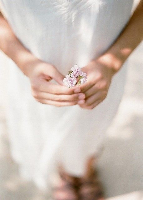 : Hands, Little Flower, Country Romances, Vie Secrèt, Life Plans, De Leah, Fantasy Gardens, Photo, Blossoms