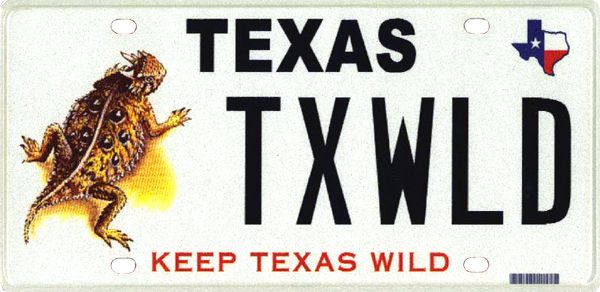 TPWD Horned Lizard License Plate  Me want  Wildlife Plates Conservation