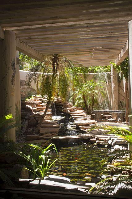 Best 25 private garden ideas on pinterest dream garden for Koi pool water gardens thornton