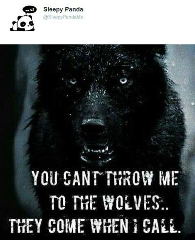 Throw me to the wolves if you'd like..