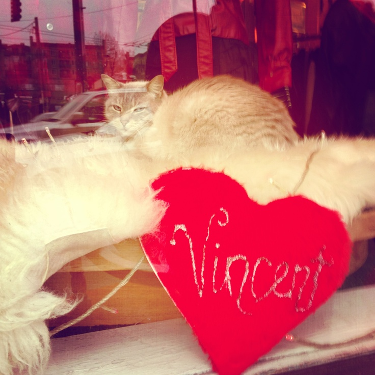Valentine Vincent in the window