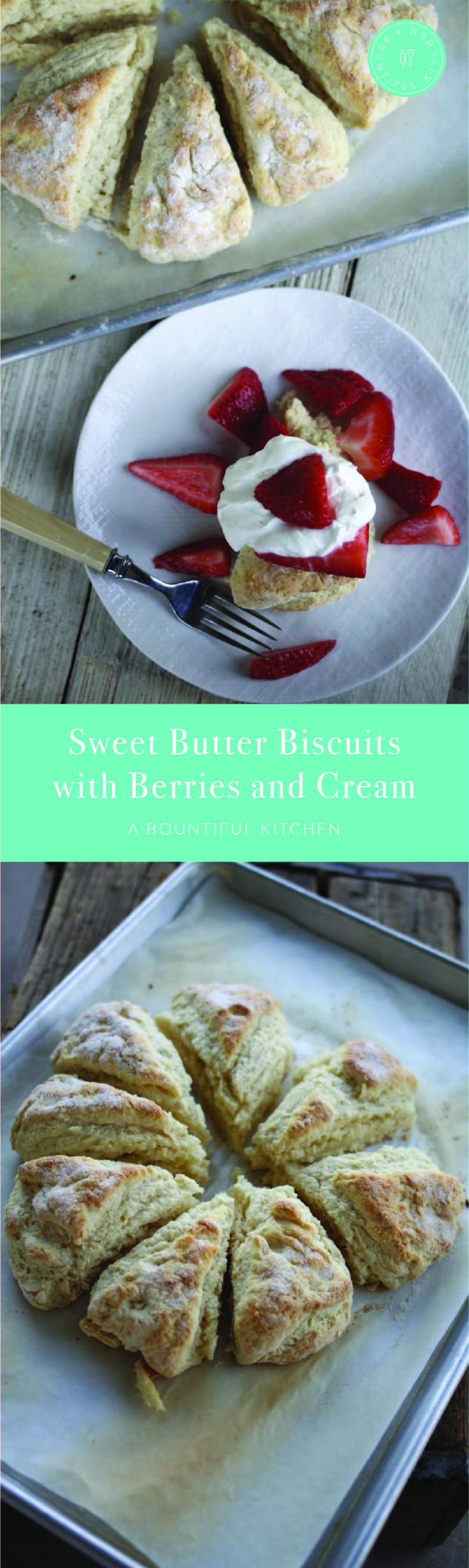 A Bountiful Kitchen: Sweet Butter Biscuits with Berries and Cream - I've taken my buttermilk biscuit recipe and changed out the shortening for butter, added sugar and cake flour to make the yummiest dessert biscuit. The result is the lightest, sweetest biscuit that's perfect for topping with cream and berries. #easy #biscuits #breakfast #dessert #holidaybaking